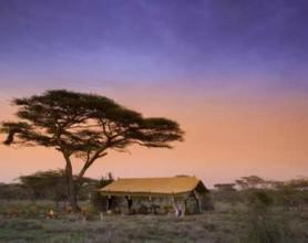 andBeyond Serengeti Under Canvas (North)