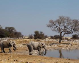 Diverse Namibia