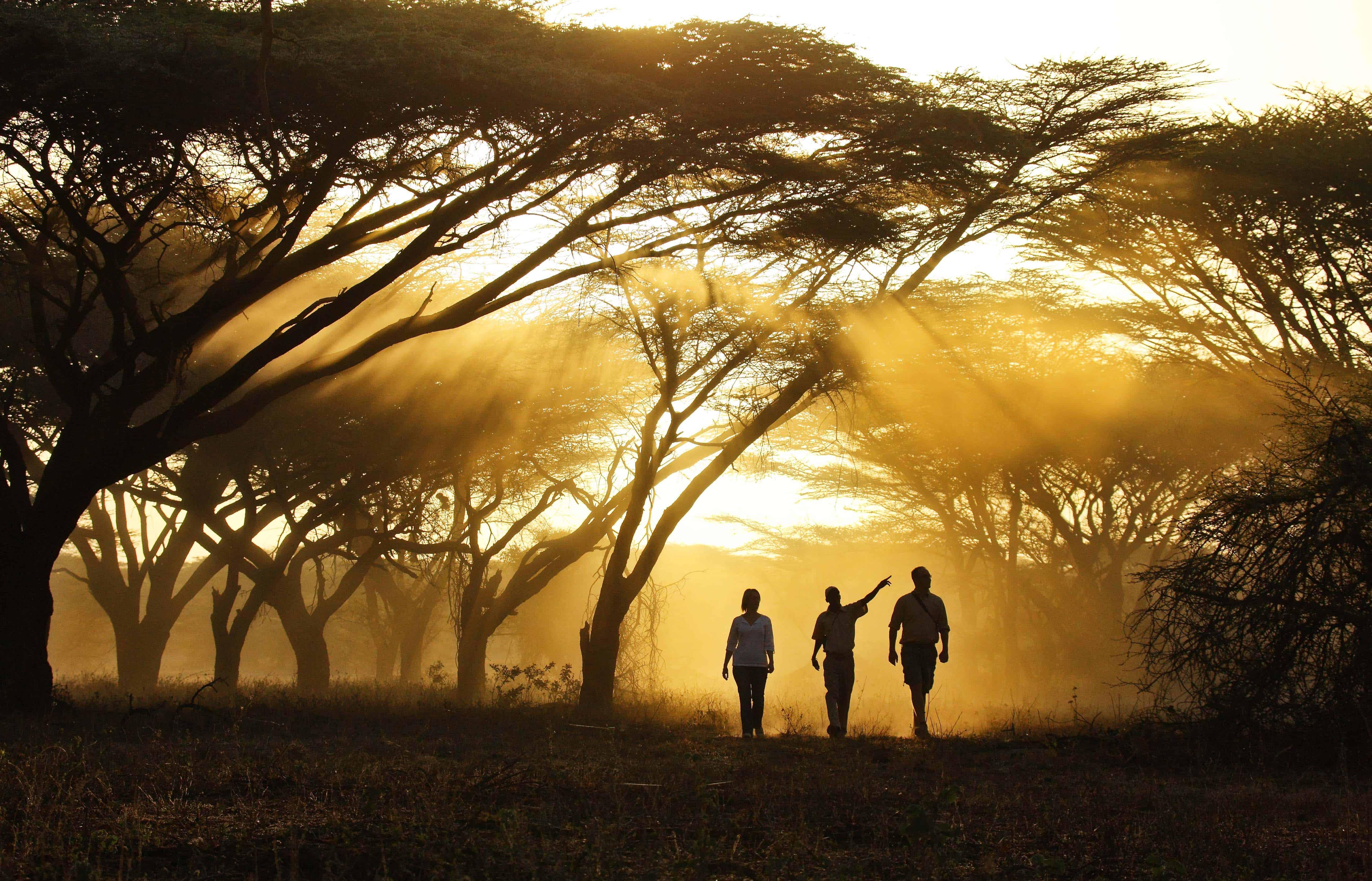 Samburu National Park Luxury Safaris Southern Destinations