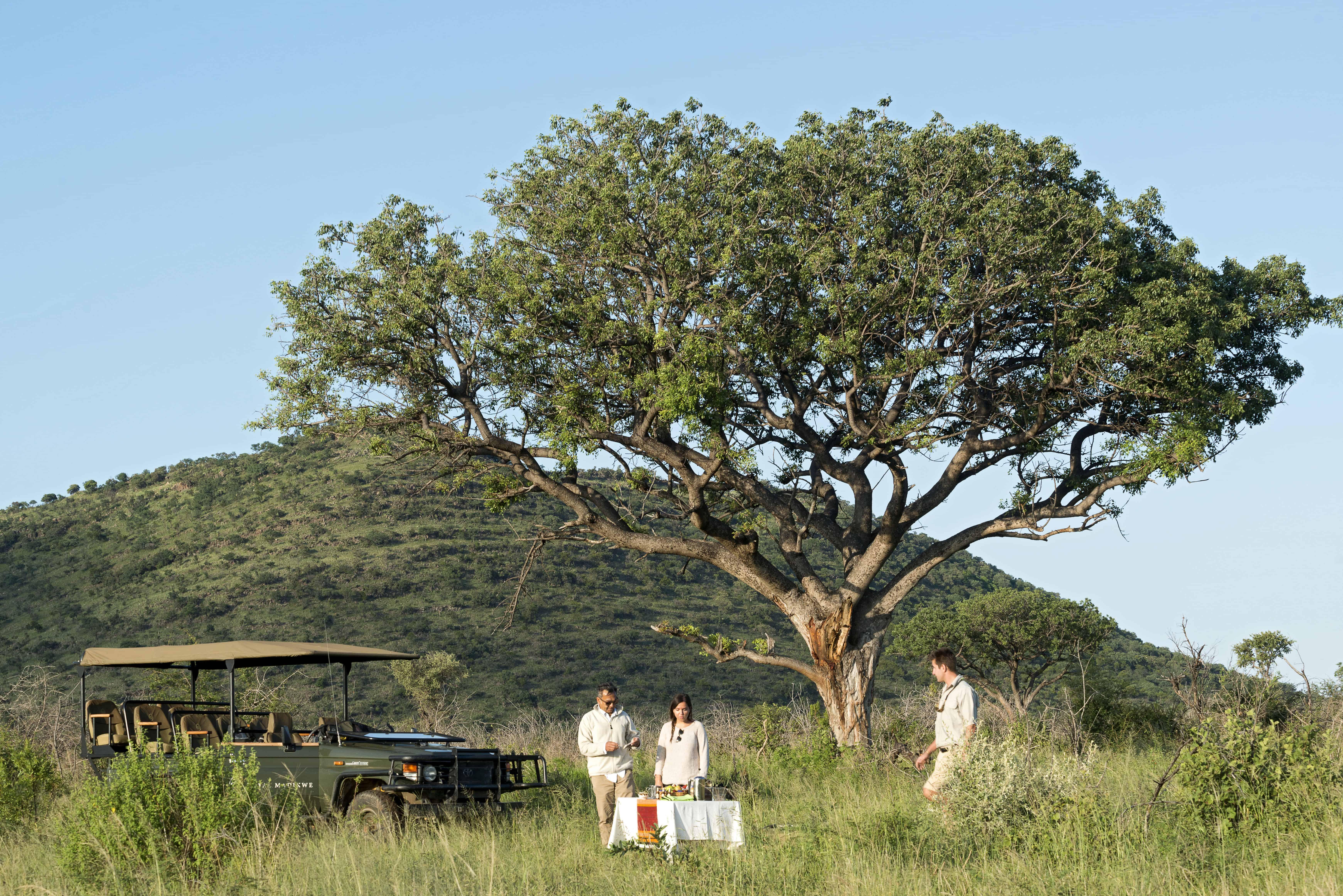 Royal Madikwe Luxury Safari Residence