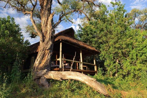 Savuti Camp