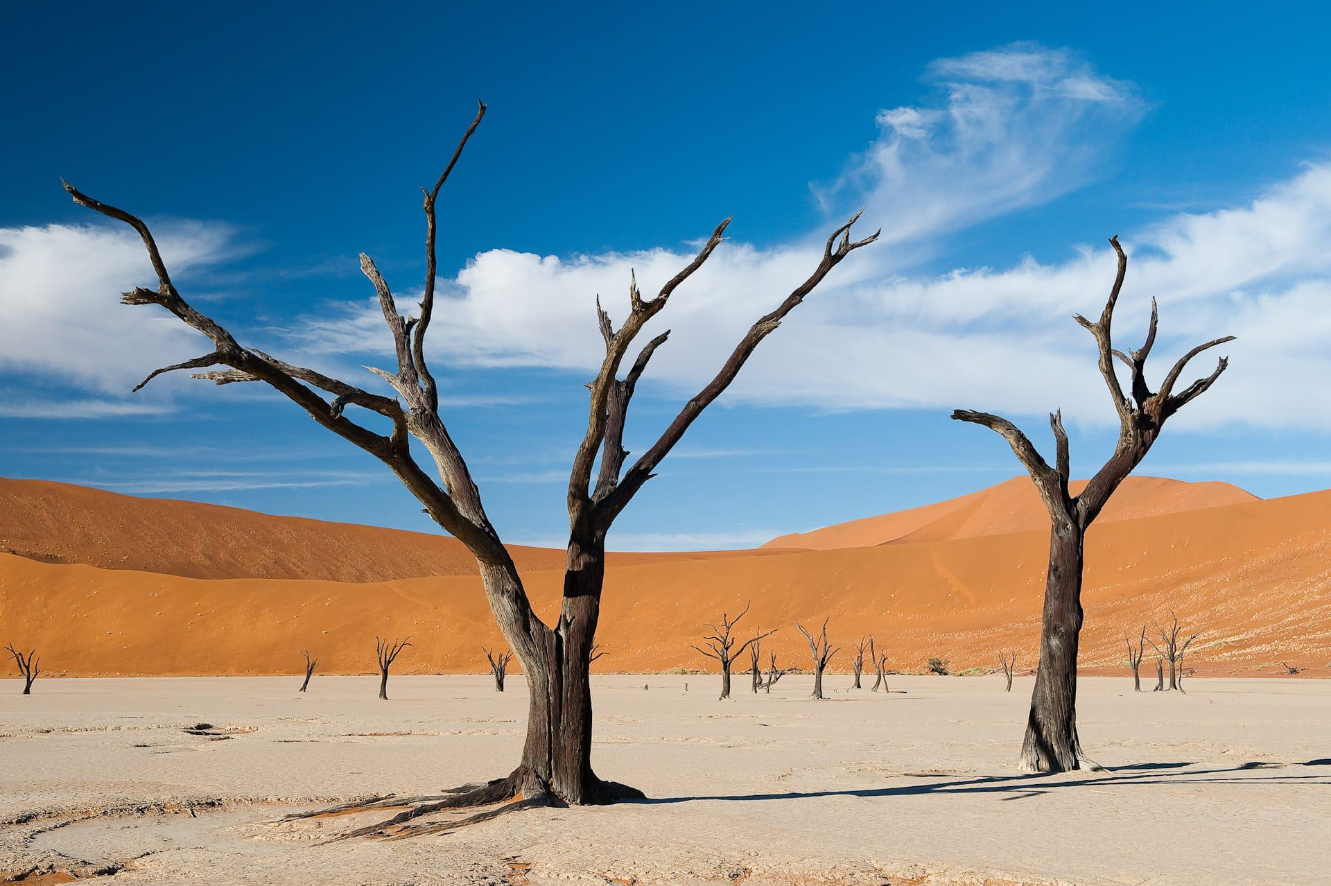 Serengeti National Park >> Sossusvlei Luxury Safaris - Southern Destinations