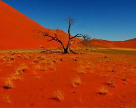 Namibia red dunes tour