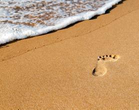 plett beach tour