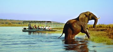 Why Botswana is The Ultimate Safari Destination and On Trend