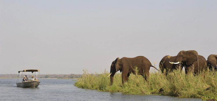 The Lower Zambezi: Remote and Wild Africa at Its Best