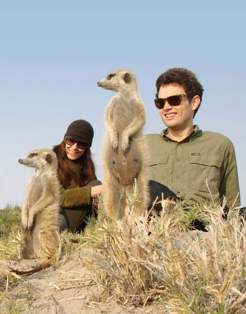 Meerkats at San or Jack's Camp