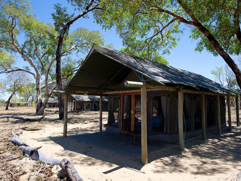 Davison's Camp