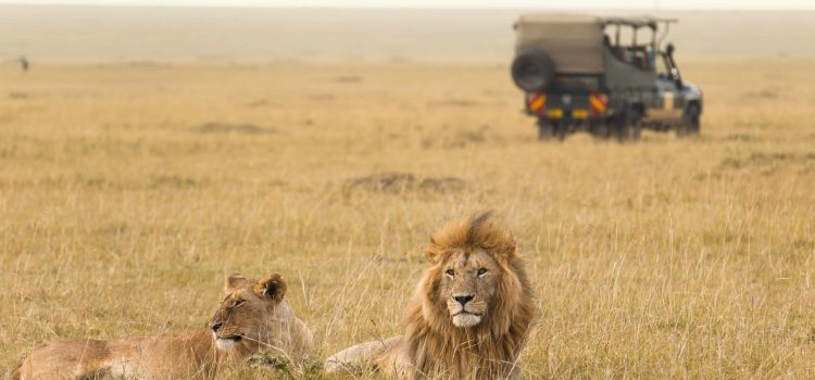 Marty & Patti's Epic 47 Day Journey Through East Africa
