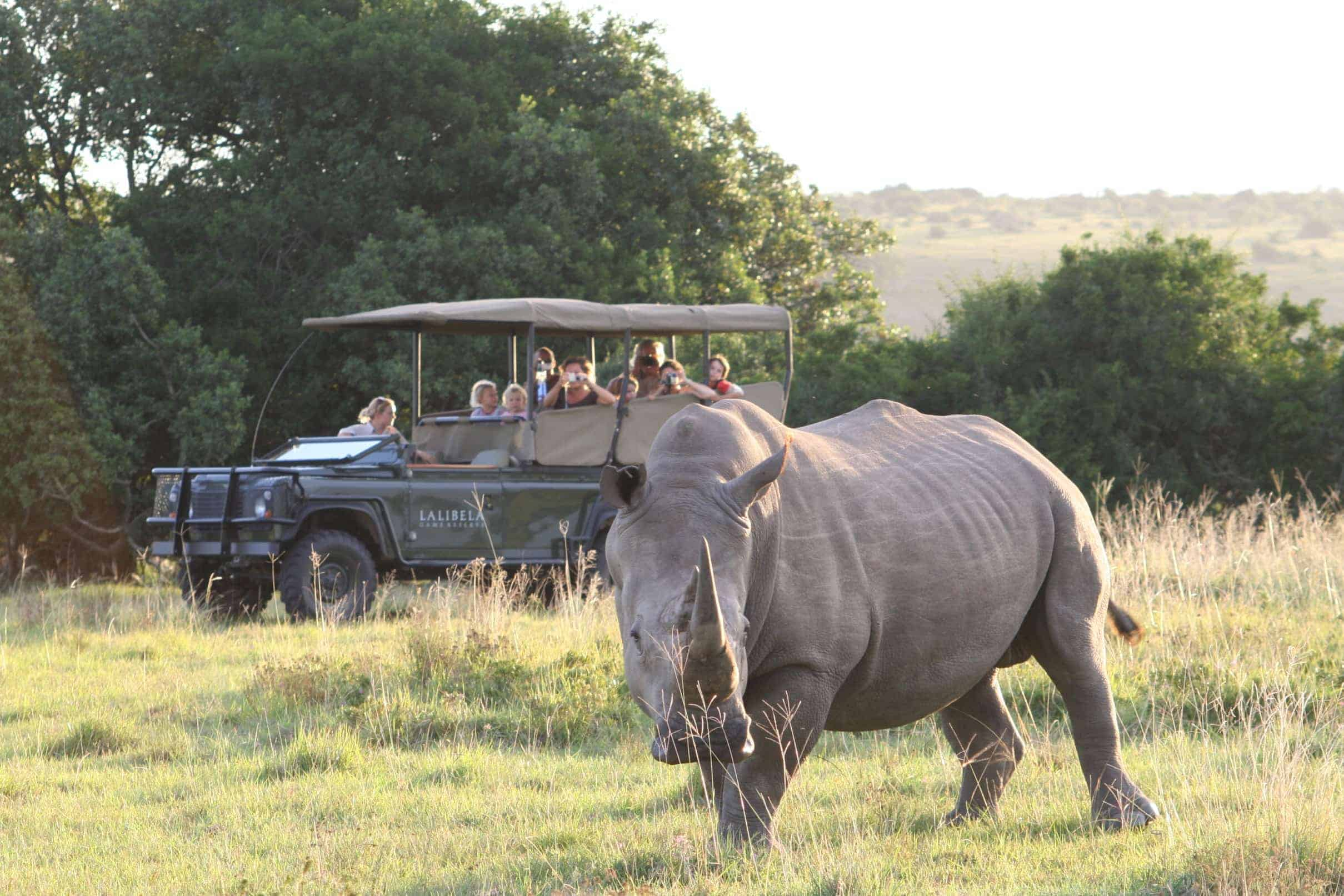 childrens game drive