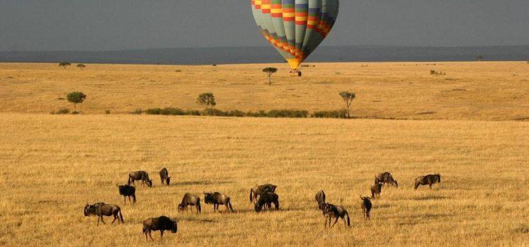 Air balloon flying over Masai Mara