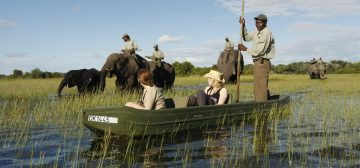Top 5 Places In Africa To Interact With Elephants