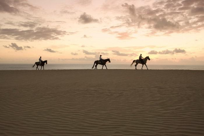 Horseback riding in Mozambique
