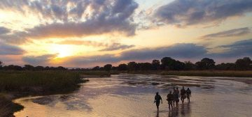 Africa's Finest: Our Top 5 Eco-Resorts in Zambia