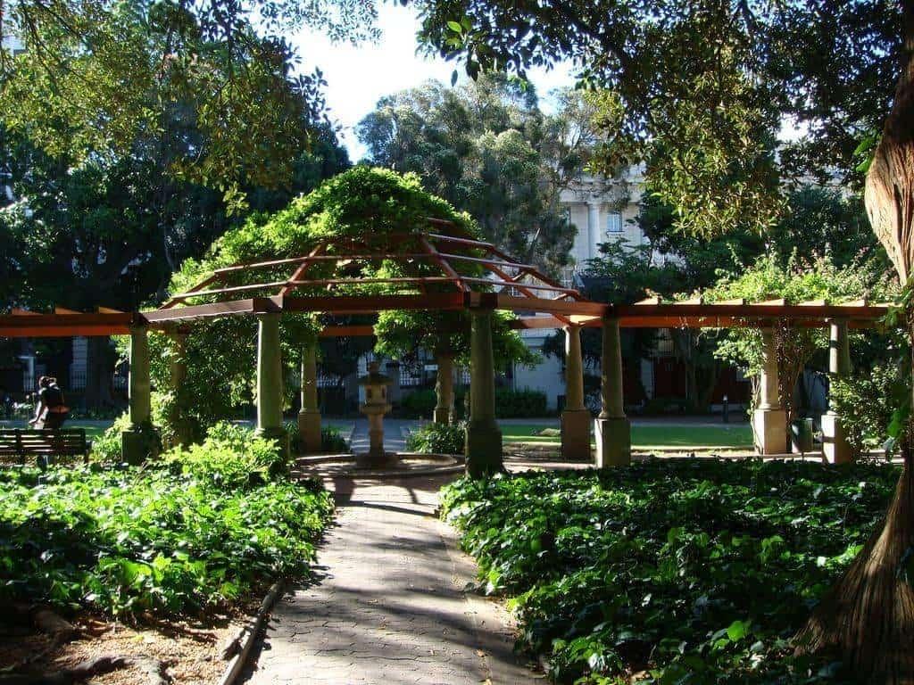 Company_Gardens_picnic_spot_in_Cape_Town