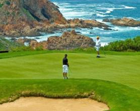 pezula golf