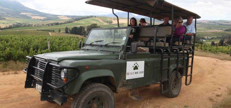 Go On A Wine Safari!