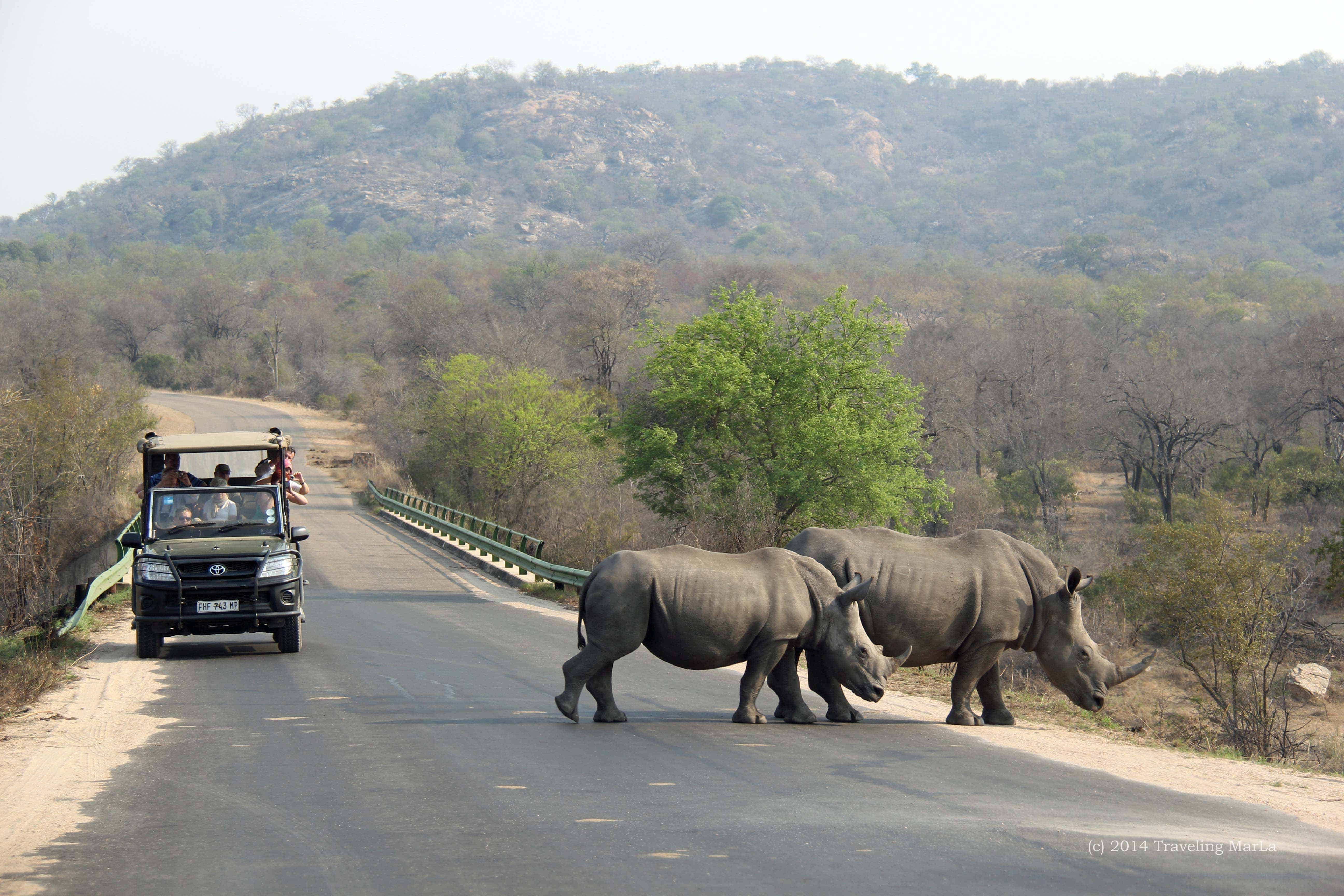 description of khadimnagar nationa park tour The tour guide in charge will make use of a step-on tour guide when entering a large national park or attraction like disneyworld in this instance, the step-on guide has far more intricate knowledge about the location.