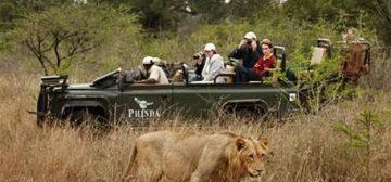 Is Phinda The Best Game Reserve In KwaZulu Natal?