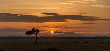 Kenya, Victoria Falls, Kruger & Cape Town