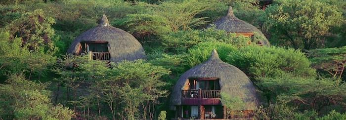 Serena_Serengeti
