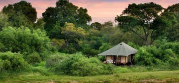 Our Top 10 Luxury Safari Camps: Experience Africa Under Canvas