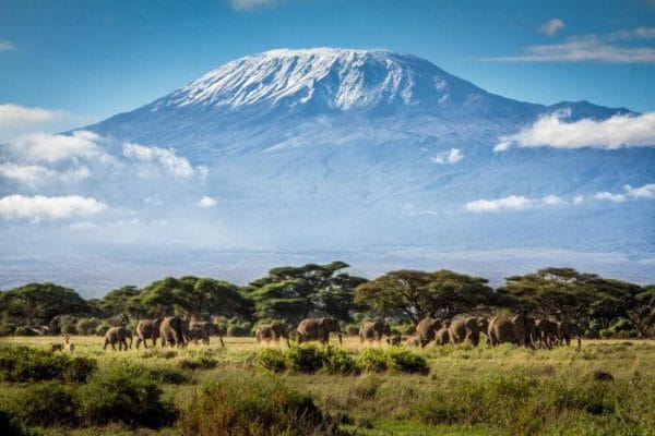 mount kilimanjaro roof of africa
