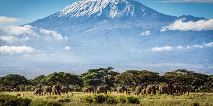 mount kilimanjaro roof of africa