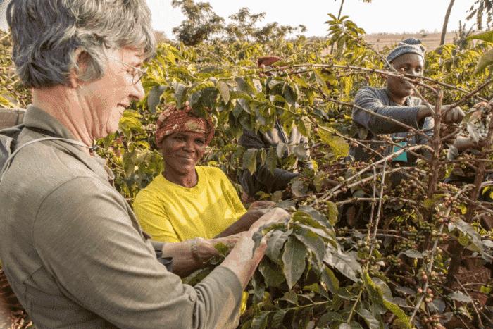 Coffee plantation tour at Ngorngoro Farm House
