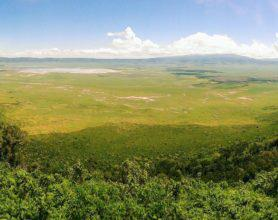 View over Ngorongoro Crater