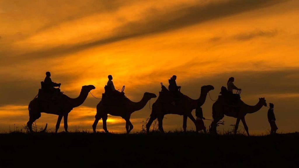 Camel-trekking at sunset in Kenya (Loisaba Tented Camp)