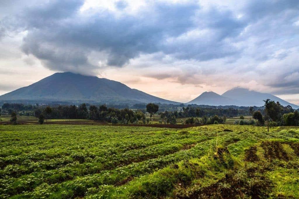 Rwanda's Volcanic Views