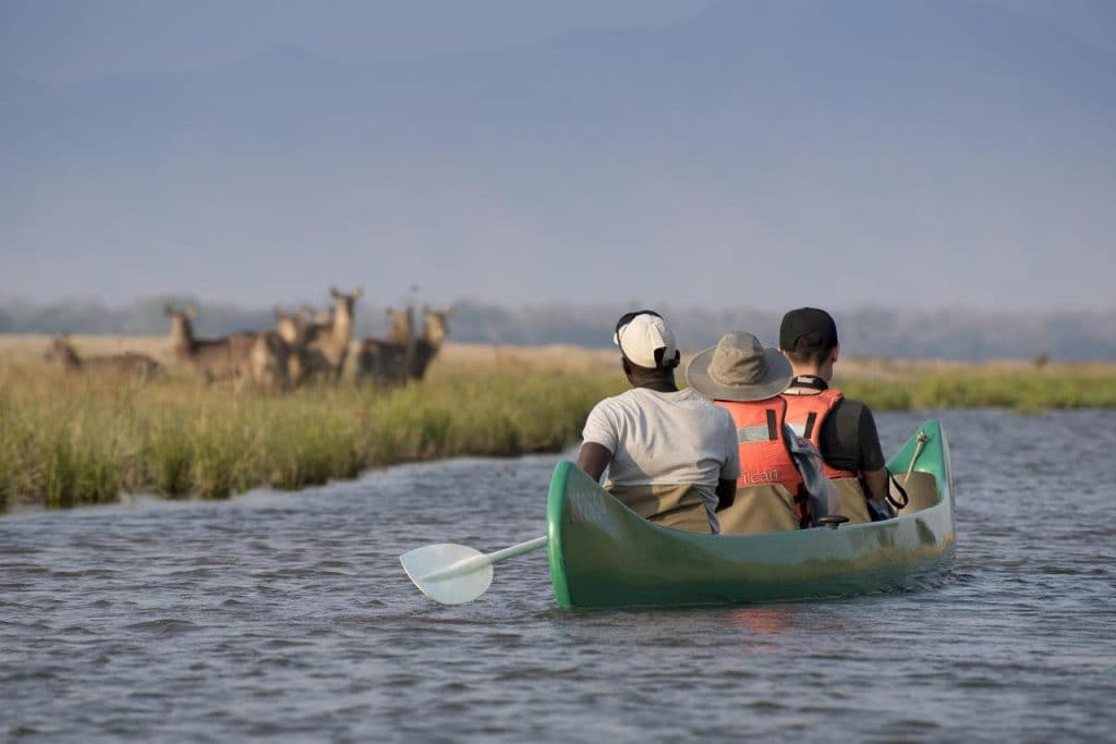 Paddling silently across the still, deep waters of the Lower Zambezi allows for a completely different wildlife experience where you'll encounter hippos, crocodiles, elephants and an astounding abundance of birdlife.