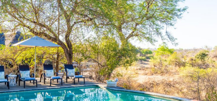 Thornybush Game Lodge - Southern Destinations