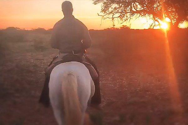 Kalahari Desert: Where silence is golden