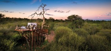Cape Town, Winelands & Big Five Safari