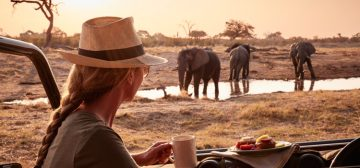 Spirit of Africa Safari – Cape, Botswana & Vic Falls
