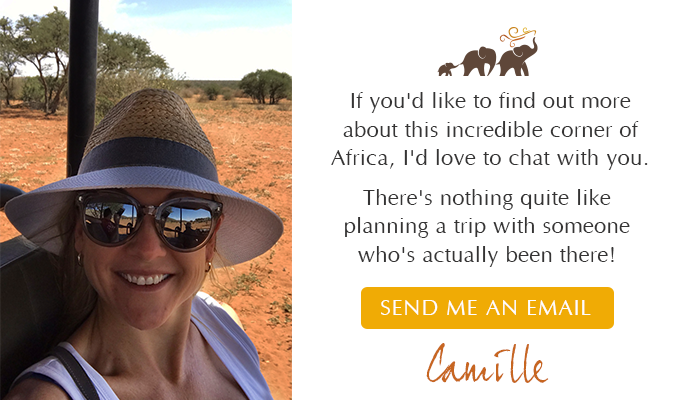 Send Camille an email to: camille@southerndestinations.com