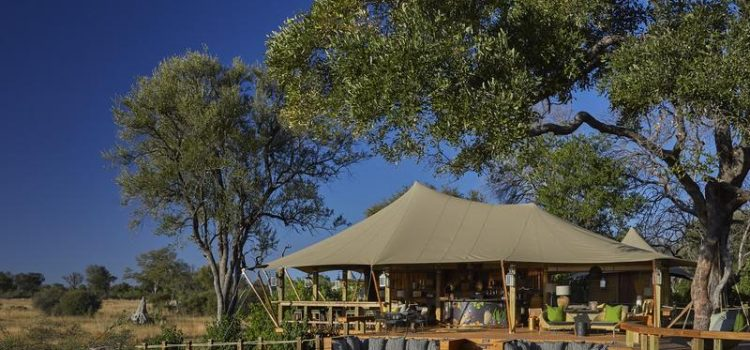View of Tuludi Camp in the Khwai, Botswana - by Natural Selection (Southern Destinations)