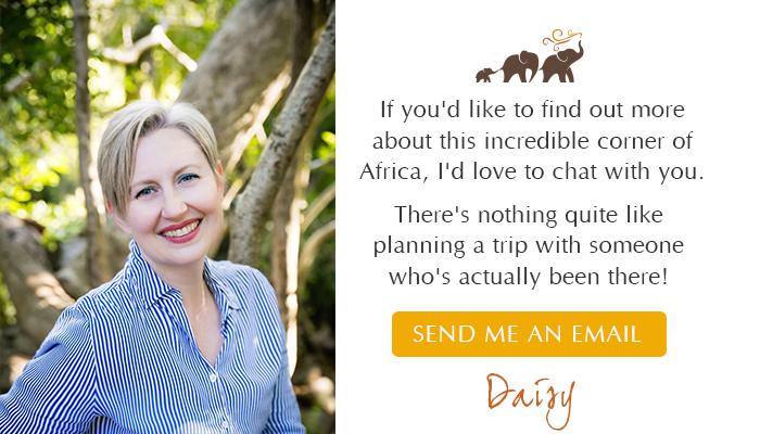 Send Daisy an email