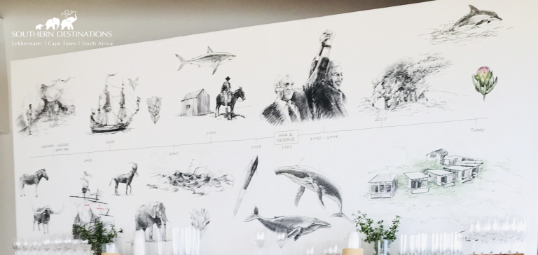 Drawing of local fauna, flora and history of De Hoop - Lekkerwater Beach Lodge