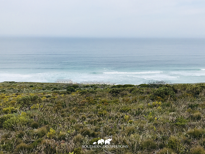 Lekkerwater is so naturally designed that it's almost impossible to see it between the fynbos and thundering waves.