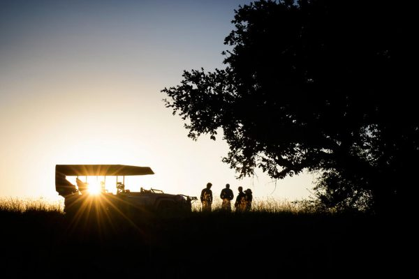 A Safari For Purists - sunset game drive with sundowners - Ila Lodge - Southern Destinations
