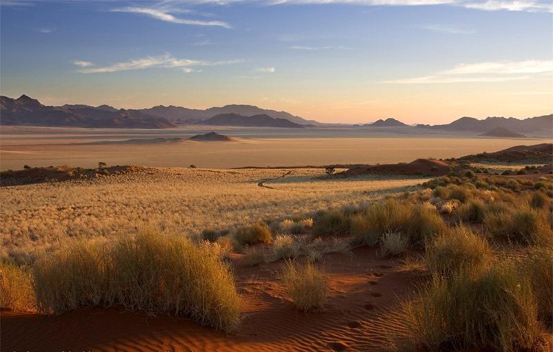 Namibia - desert at dawn - Wolwedans
