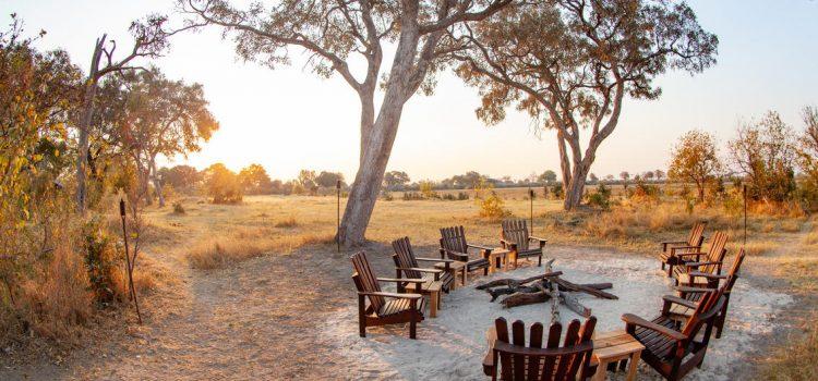 My safari to the Kwara Private Reserve