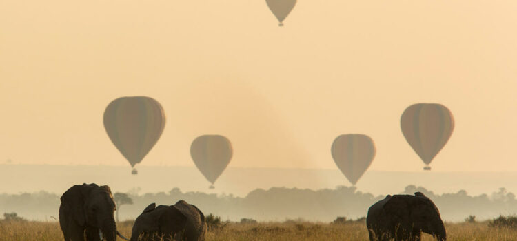 Why East Africa Is Our Top Destination Right Now