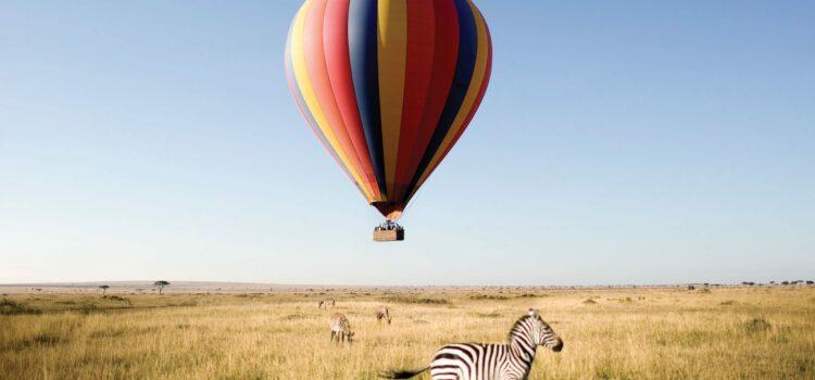 "The ""REAL"" Safari Bucket List"